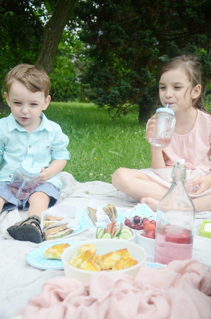 piknik 20