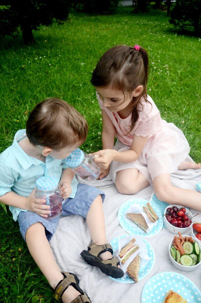 piknik 6