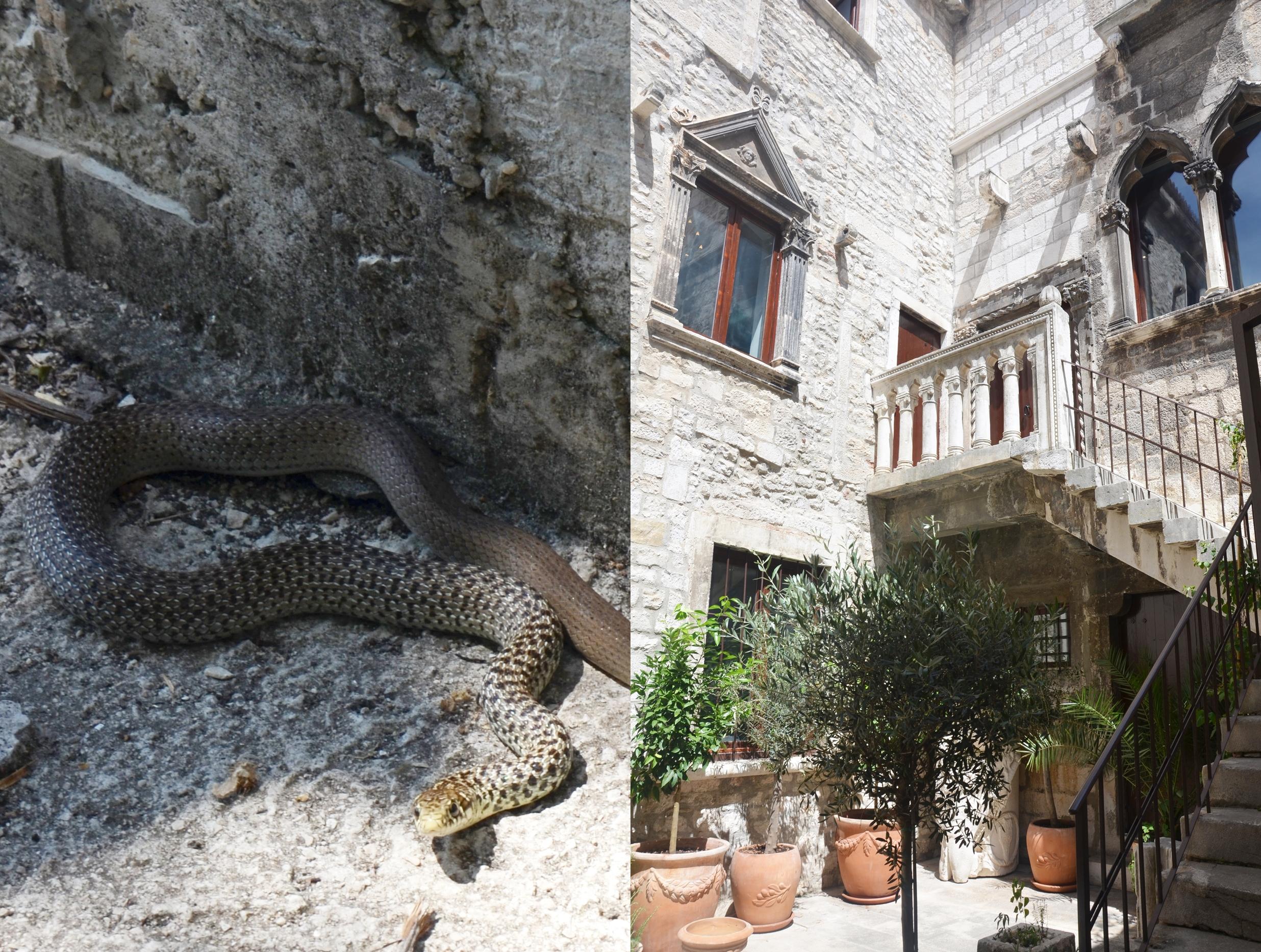 wakacje w Chorwacji 9